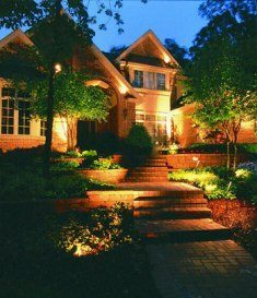 Lighten Up Your Landscape!