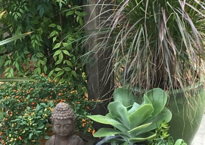 Little zen corner of my yard